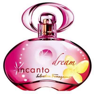 Salvatore Ferragamo Incanto Dream 100ml (Туалетная вода)